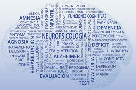 Informe neuropsicológico (adultos)